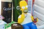 Homer fridge guard