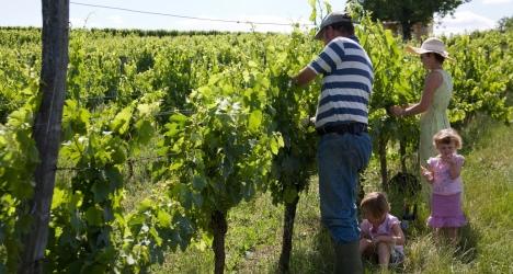 Découvrir l'agriculture biologique et durable comme un routard...